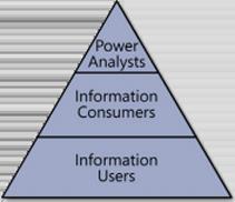 The business user communities