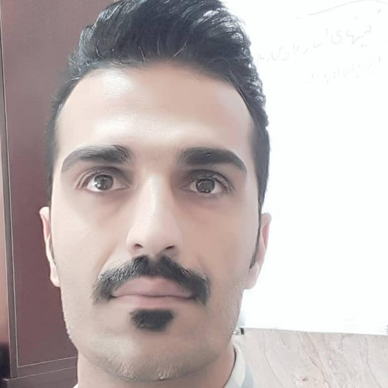 حمید رضا حسامی